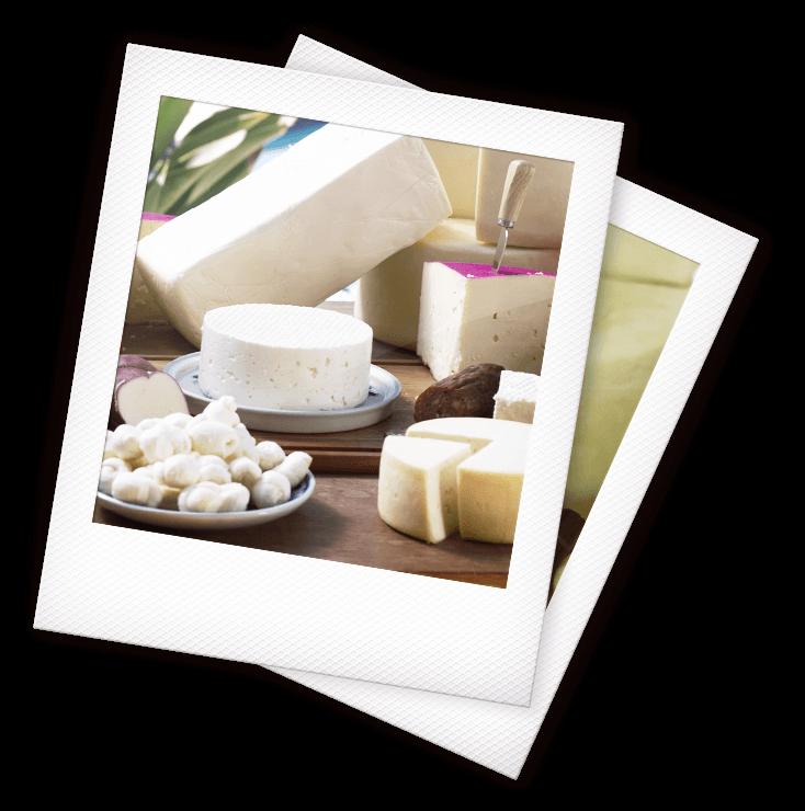 queijos-eliane-home-1